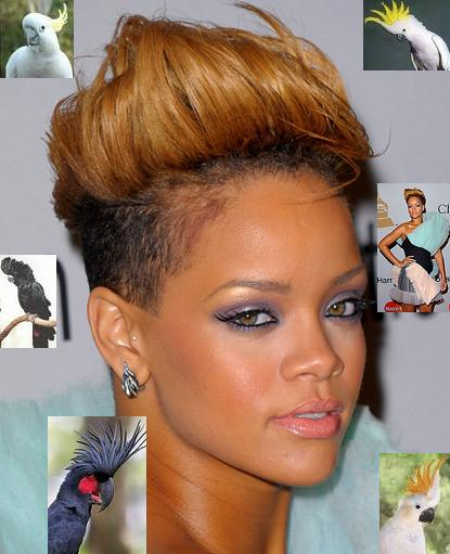 Rihanna Cockatoo Hair Urban Islandz