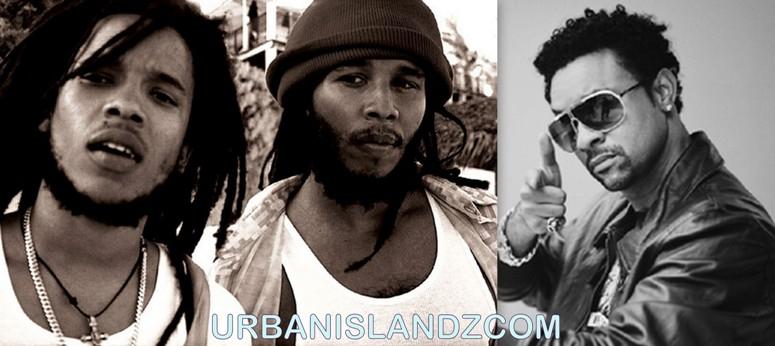 Shaggy And Marley Showdown For Reggae Grammy