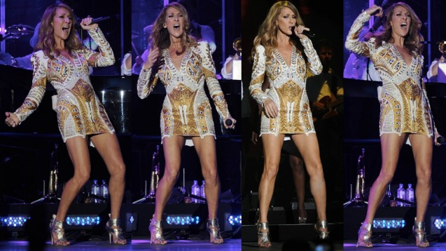 Celine Dion Suffers Wardrobe Malfunction At Jamaica Jazz