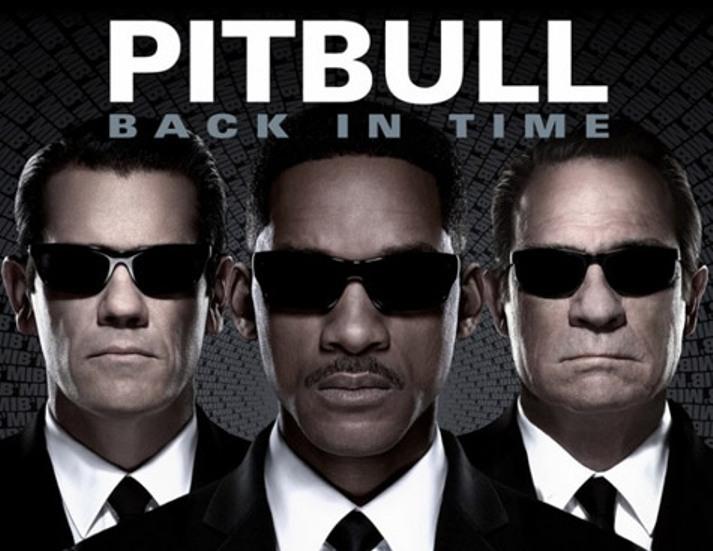 pitbull back in time MIB3