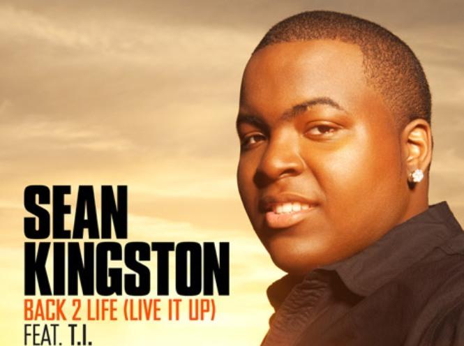 Sean kington back 2 life artwork cover