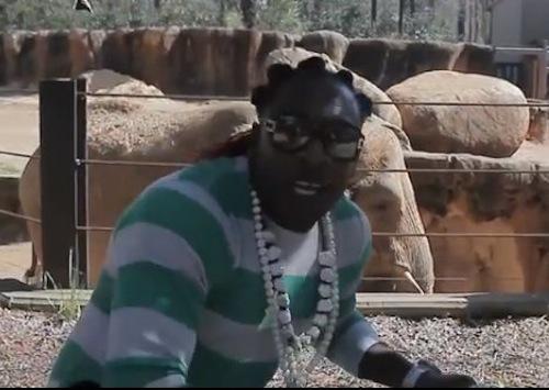 Elephant Man Harlem Shake