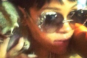 Rihanna Flirts With Furry Death, Cops Intervene