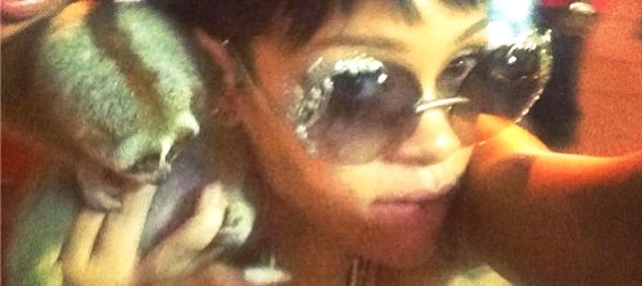 Rihanna Flirts With Furry Death, Cops Intervene