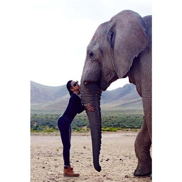 Rihanna and a Elephant