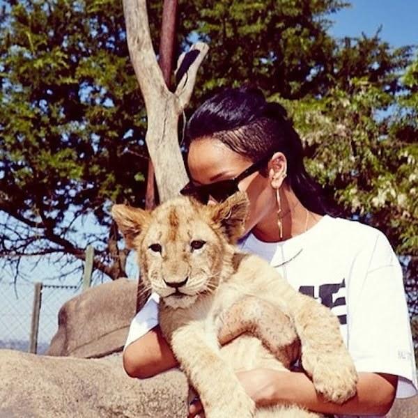 Rihanna and a lion