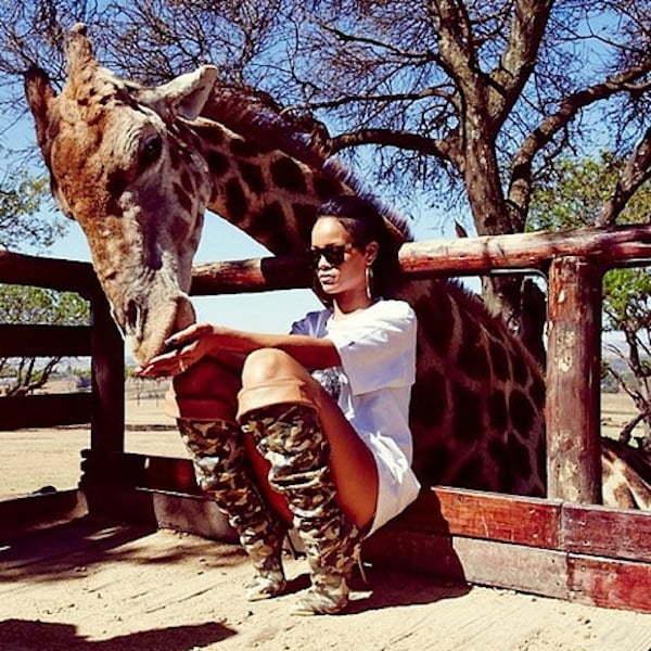 Rihanna and giraffe