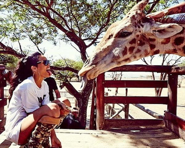 Rihanna at the zoo