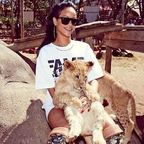 Rihanna play with lion