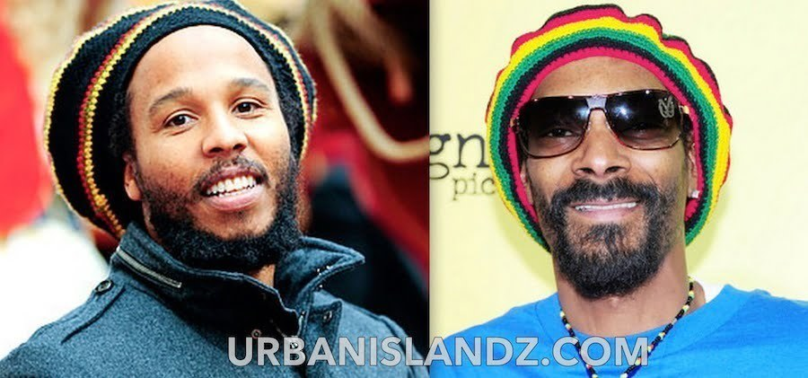 Snoop Lion, Ziggy Marley Make Reggae Grammy Preliminary List
