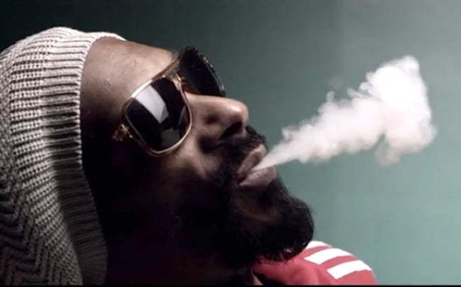 Snoop Lion Smoke Weed Video