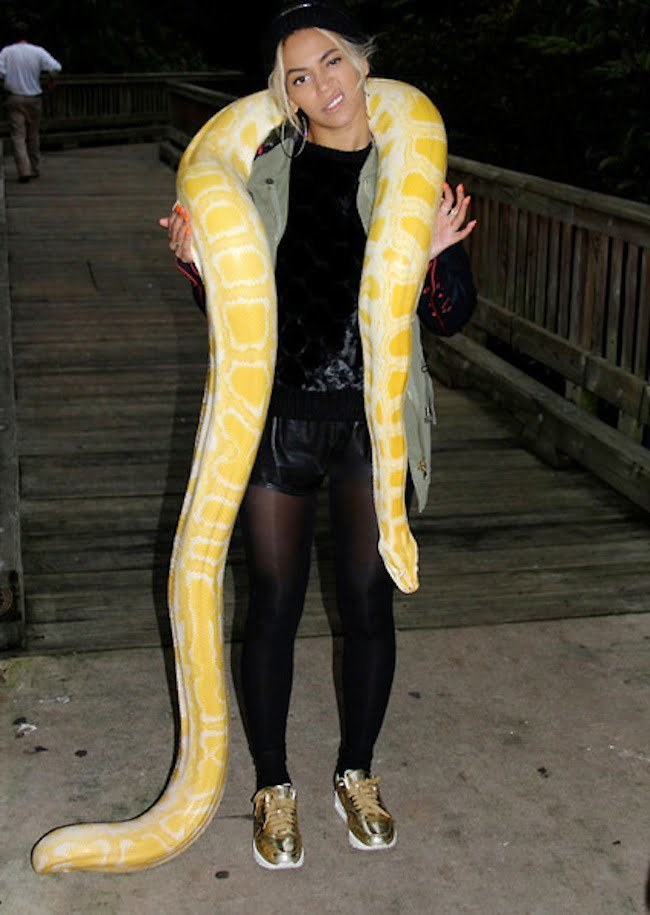 Beyonce and a snake