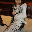 Beyonce with a tiger