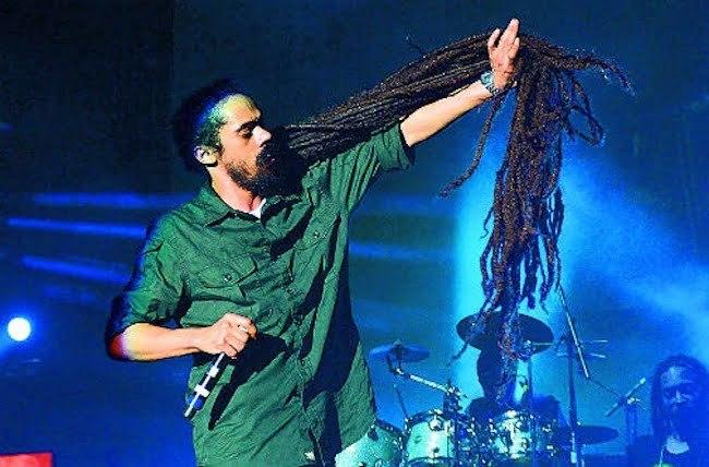 Damian Marley locks