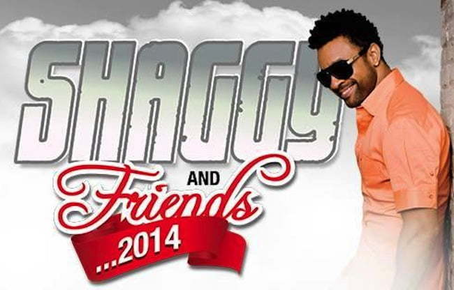 Shaggy and friend benefit concert