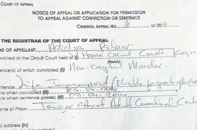 Vybz Kartel appeal docs