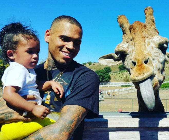 Chris Brown Royalty at the zoo