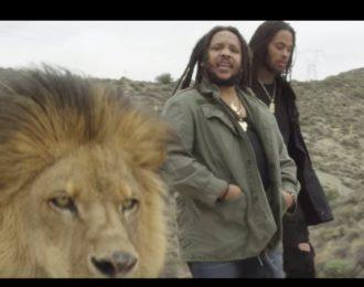 VIDEO: Stephen Marley Ft. Waka Focka – 'Scars On My Feet'