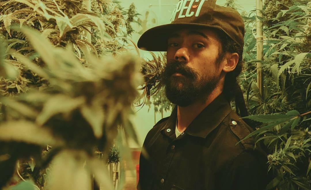 How Much Is Tax >> Damian Marley Converts Old Prison Into Marijuana Dispensary - Urban Islandz