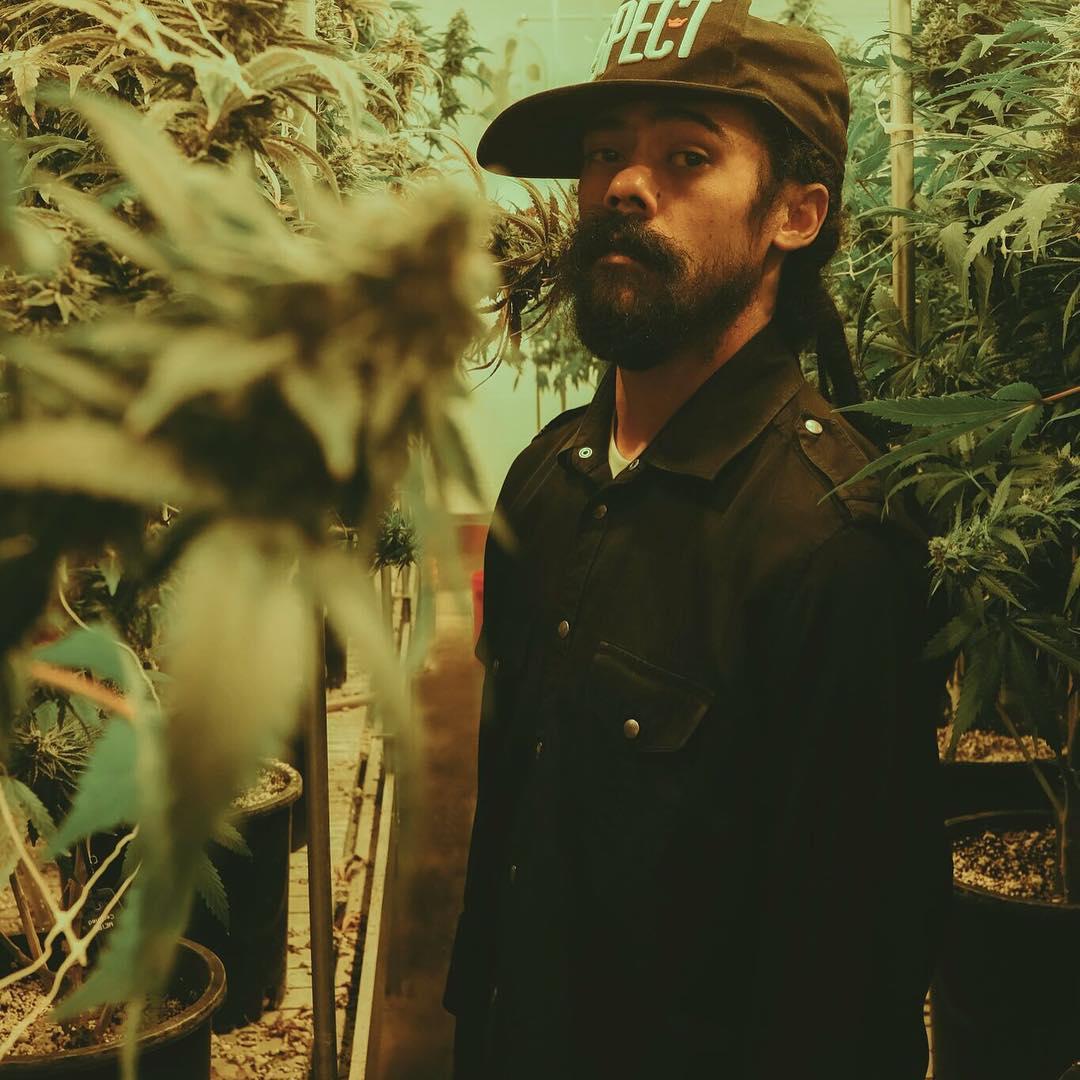 damian-marley-marijuana