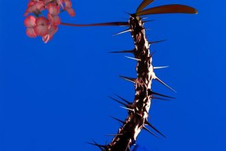 Flume Featuring Pusha T – Enough [New Music]