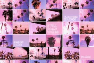 Flatbush Zombies feat. Snoop Dogg – Still Palm Trees (G-MIX) [New Music]