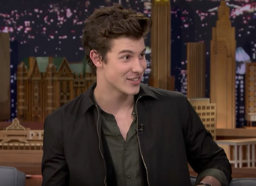 Shawn Mendes Got Roughed Up by Drake's Security